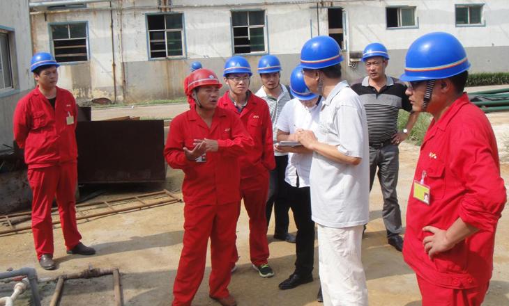 河南红东方化工股份有限公司清洁生产审核